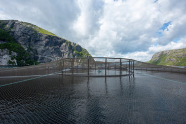 Salmon Cage NP SS-74